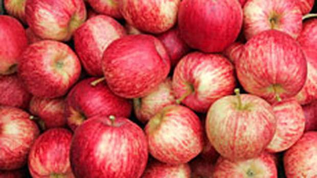 Fruit: Gala apples