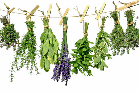 Herbs & Seasoning: Assorted Fresh Herbs