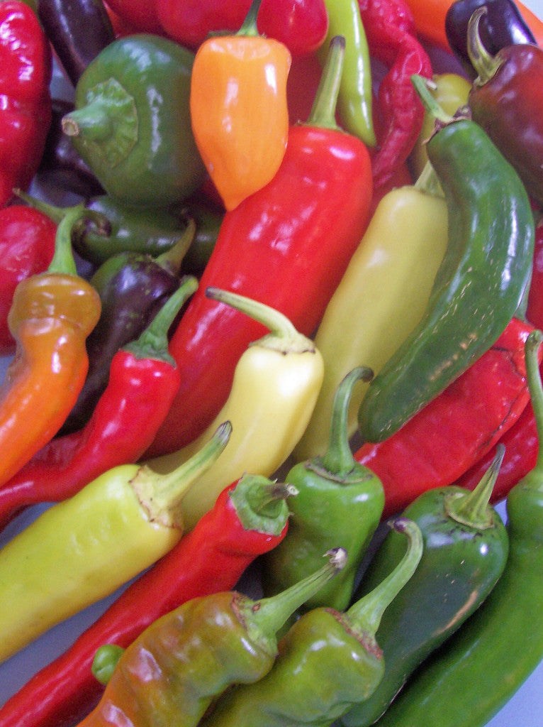 Vegetables: Peppers (Salsa Pepper Medley)