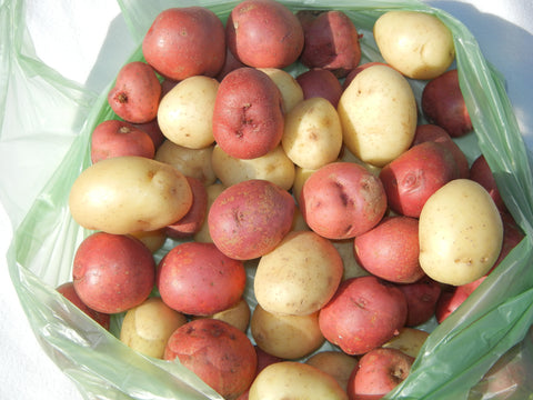 Vegetables: Potatoes (New Potato Mix)