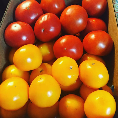 Vegetables: Tomatoes (Red & Yellow Mix)
