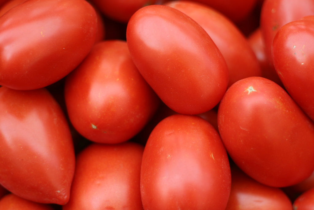 Vegetables: Tomatoes (Roma)