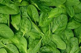 Vegetables: Spinach - LIMITED