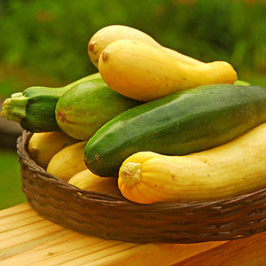Vegetables: Summer Squash Mix