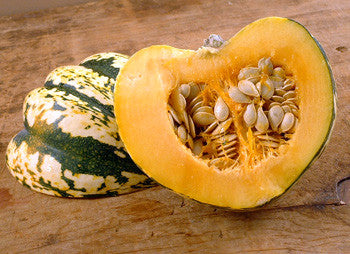 Vegetables: Fall Squash (Sweet Dumpling)
