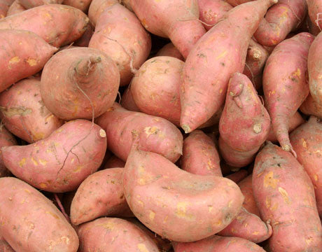 Vegetables: Sweet Potatoes (traditional orange)