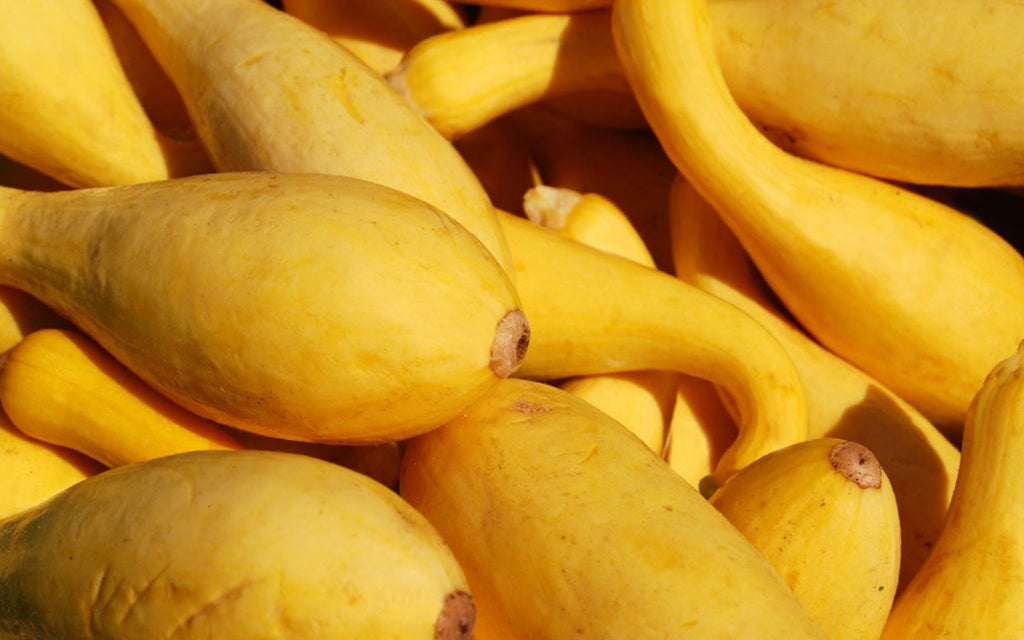 Vegetables: Yellow Summer Squash