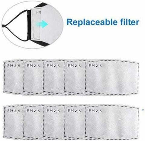 PM 2.5 Filter Face Mask (Pack of 2 filters)