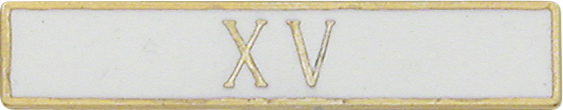 X V Roman 15 Years of Service White Citation Bar