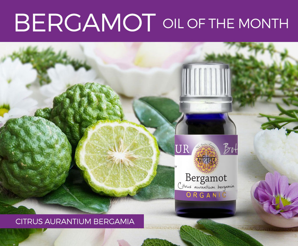 Bergamot- Oil of the Month - August