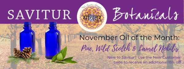 November Oils of the Month!