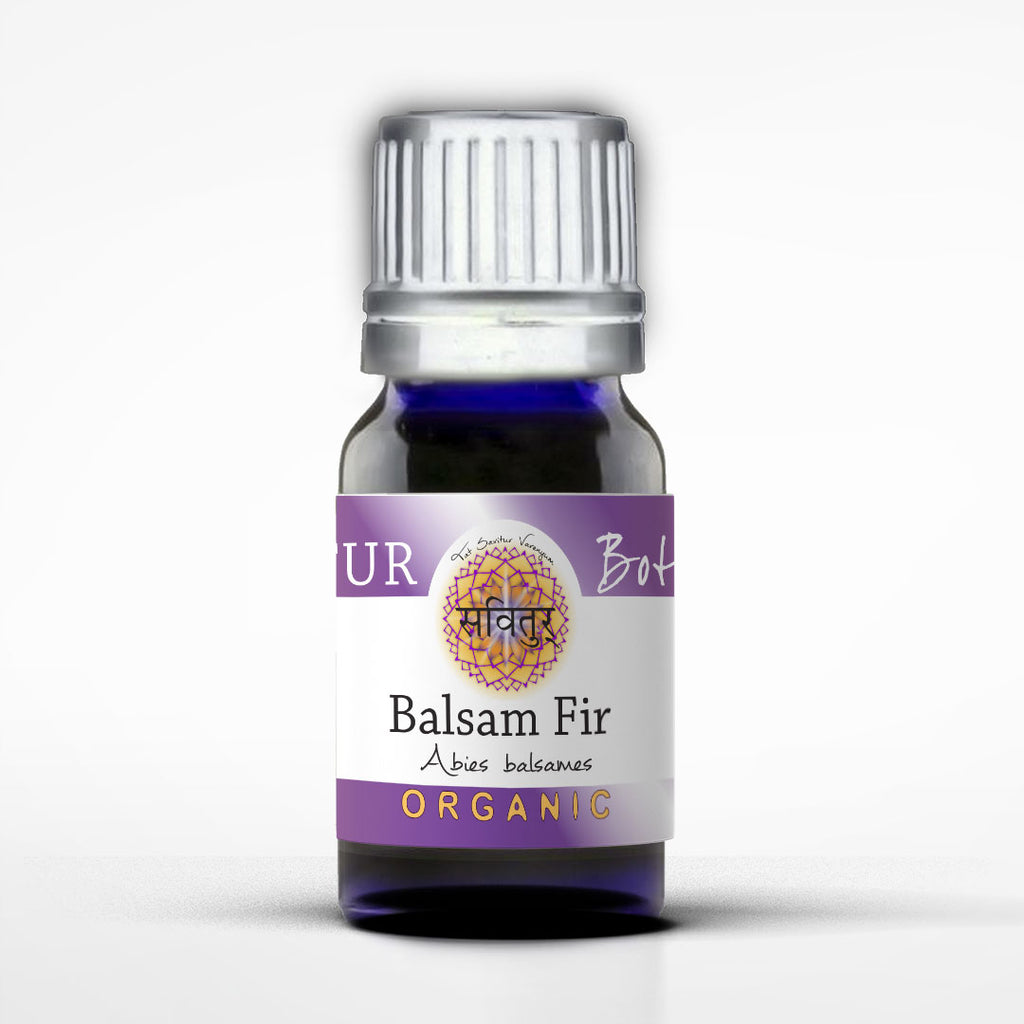 Fir, Balsam (Bio-Certified)