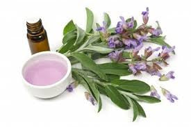 Clary Sage (ECOCERT) ~ Save 10% In March!