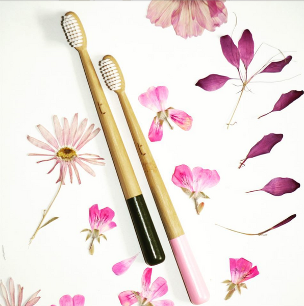 bamboo truthbrush tooth brush in grey and pink