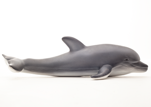 Green Rubber Toys Dolphin - Smallkind