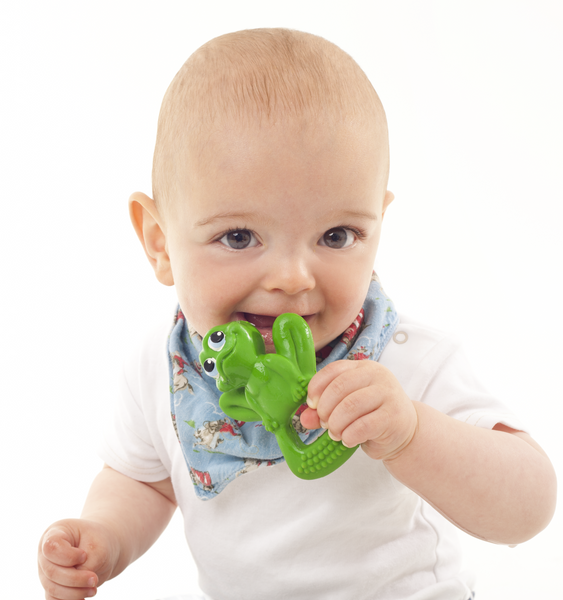 lanco bo the frog rubber teether with baby