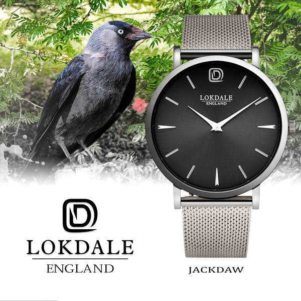 Jackdaw Silver 316L Stainless Steel Watch - 40MM DARK SKIES LOKDALE LTD