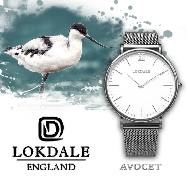 Mens Silver 316L Stainless Steel Watch - Avocet ORIGINS LOKDALE LTD