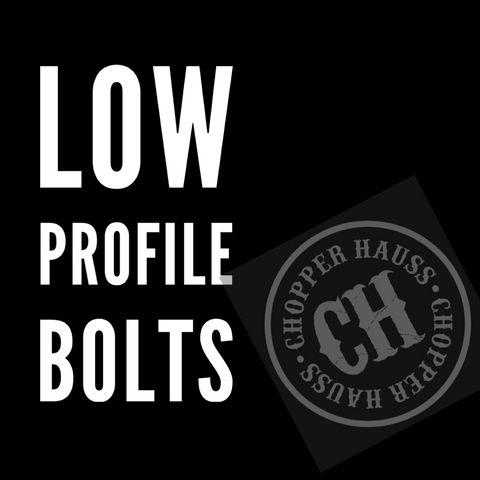 Low Profile Rotor Bolt Set:  Raw