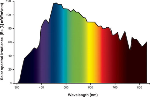 ultraviolet ray spectrum