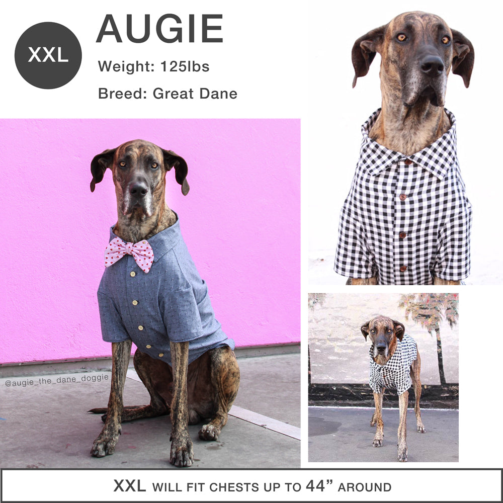 Dog Clothing with Matching Owner Styles by Dog Threads x Squad Style