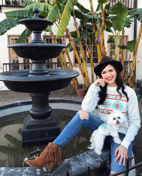 Aztec Tribal Print Dog and Matching Human Sweater by Dog Threads