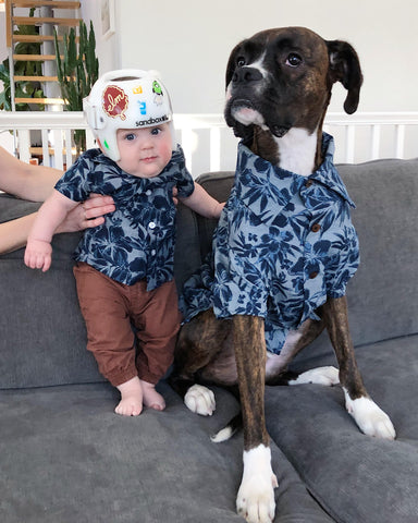 Matching Hawaiian Print Shirts for Dogs & Kids by Dog Threads