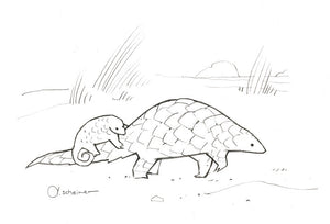 Pangolin doodle illustration