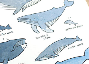 Illustrated Whales Poster, a cute print for the ocean nursery