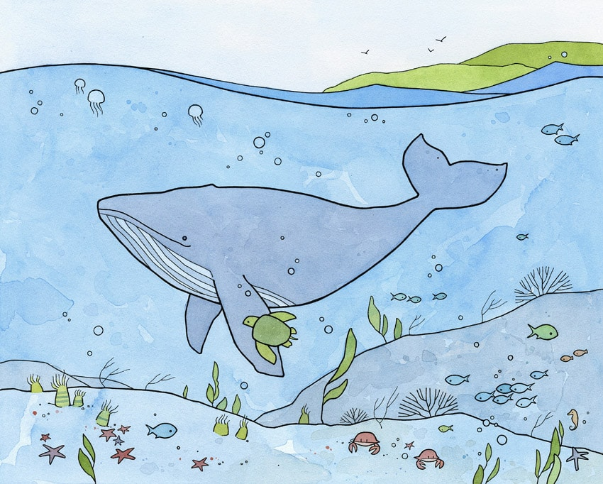 Whale and sea turtle illustration