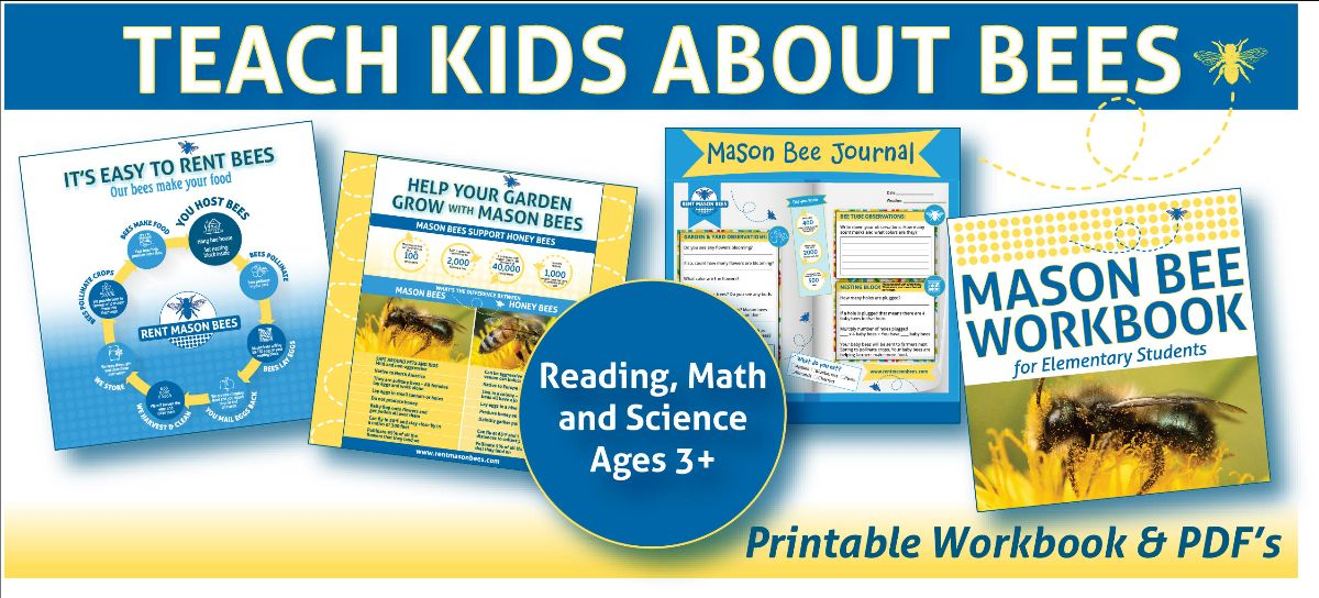 Turn Your Kids Into Backyard Scientists with our new Teaching Materials