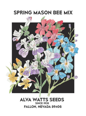 Spring Mason Bee Seed Mix