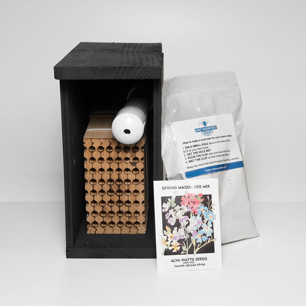 Mason Bee Kit- Shipped To Your Home