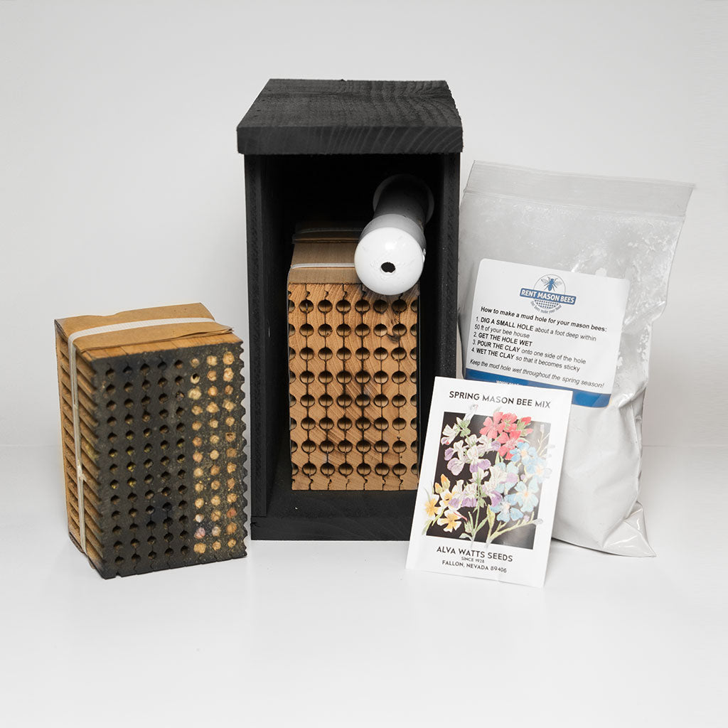 Pollinator Package- Shipped To Your Home