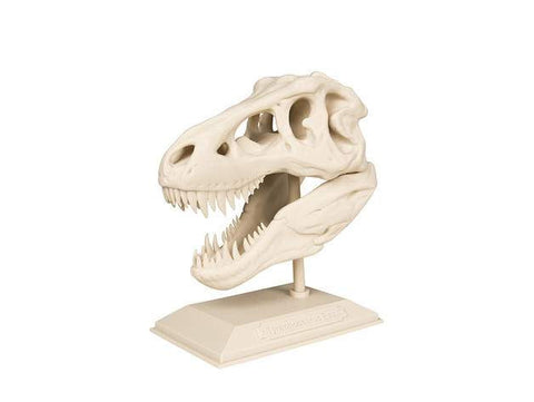 The T-Rex Skull, Brilliant Designs in 3D
