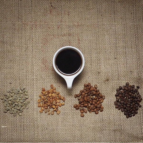 Quality from Seed to Cup: All about Roasting Coffee