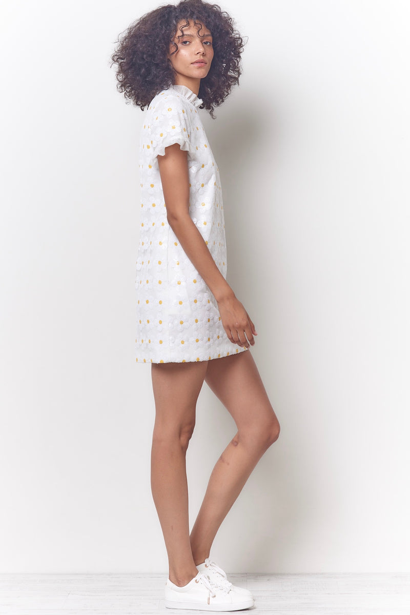 CLARA Sequin Shift Dress - Daisy