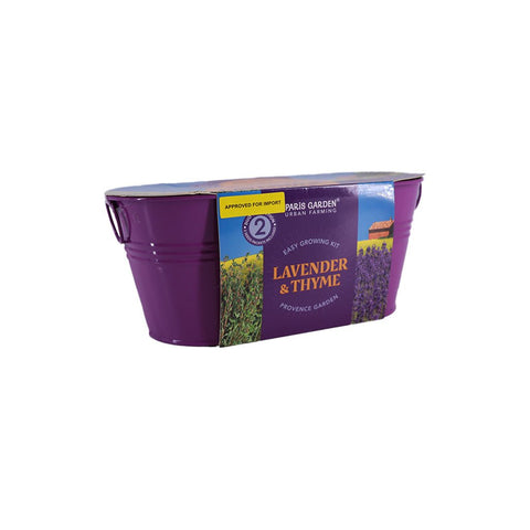 Grow Your Own Plant Thyme and Lavender Klosh Online Singapore