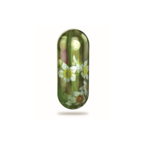 Joint Care (60 Capsules)