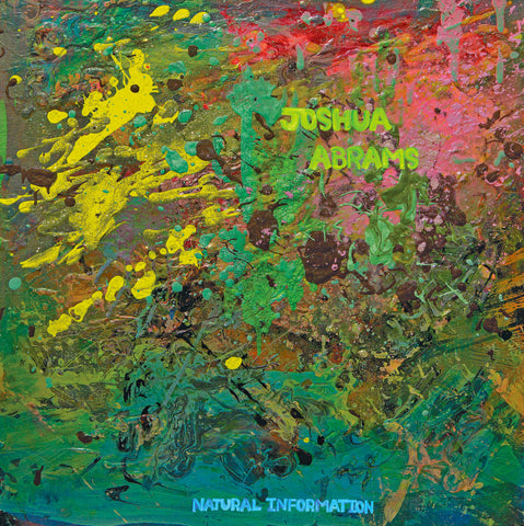 Joshua Abrams - Natural Information LP