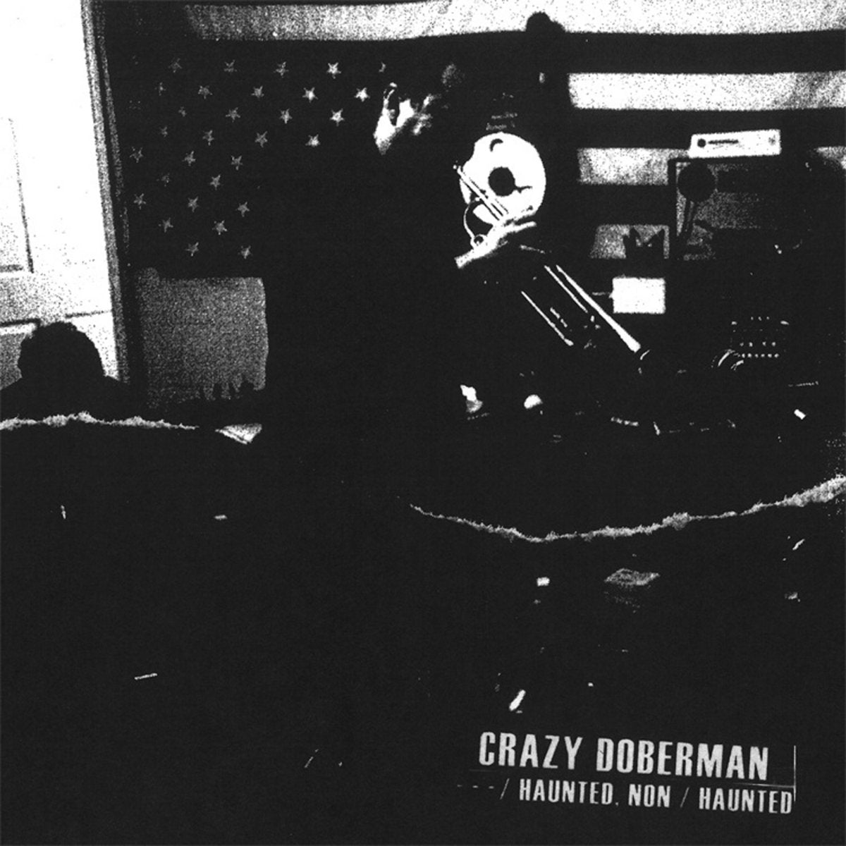Crazy Doberman - Haunted, Non / Haunted LP