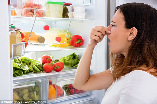 How to Control Odors Coming from Your Commercial Refrigerator