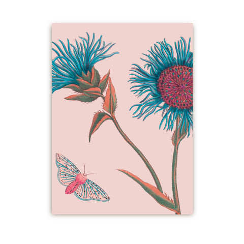 Postcard featuring a botanical print inspired by Kew Gardens plants and flowers.