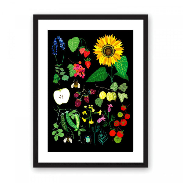 Viberent fruit and vegetables illustration set on to a matt black background.