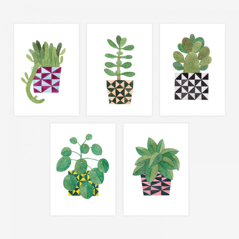 Postcards Set Of 5 Potted Plant