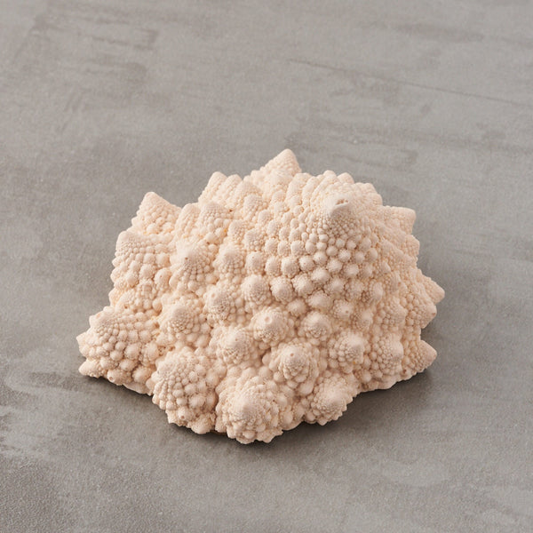 Romanesco Paperweight Stormy Plaster Pink