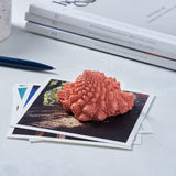 Romanesco Paperweight Stormy Blue