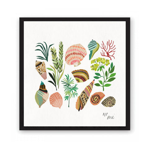 Giclée print featuring a collection of seas shells and plants.kitchen crockery .