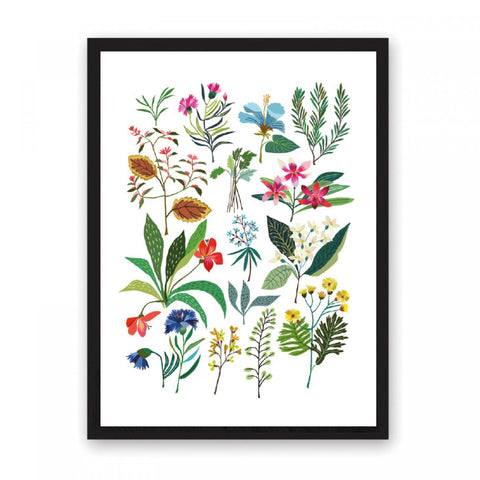 Illustration featuring brightly coloured slower stems arranged on a white background