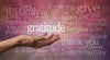 Unleash The Power Of Gratitude
